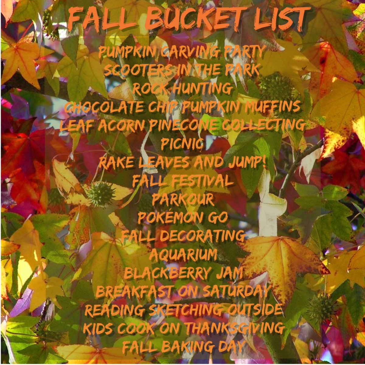 Fall Bucket List Update #2