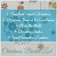 Christmas Mini Bucket List: Summary