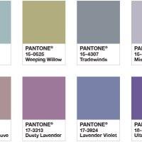Pantone Purple Haze Outfit Inspo