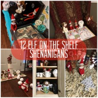 12 Elf On The Shelf Shenanigans