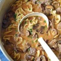 Beef Stroganoff One-Pot Soup